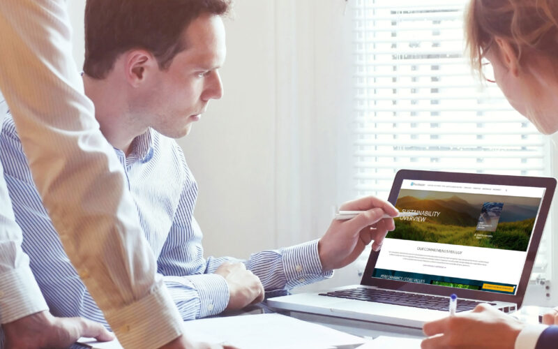 man pointing at laptop screen of ESG website